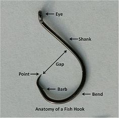 Fish hook - Wikipedia