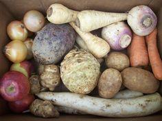 February 19, 2013 - This week's Local Box is full of roast-worthy roots! We've got sunchokes (VT), Empire apples (VT), carrots (MA), onions (NY), Russet potatoes (ME), purple top turnips (VT), parsnips (MA), Chioggia beets (MA), celeriac (MA),and Daikon radish (MA). Enjoy!