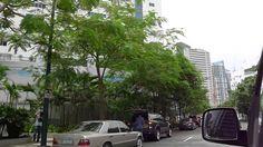 Bonifacio From Serendra to ST. Luke Hospital Global LK Properties Inc.