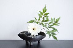 Ikebana 'White sun' with Gerbera by Otomodachi, via Flickr