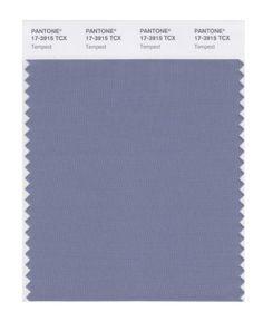 #@ Buy Cheap PANTONE SMART 17-3915X Color Swatch Card Tempesta
