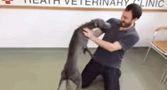 Stolen Dog And His Human Reunite, Become Happiest Pair On The Planet