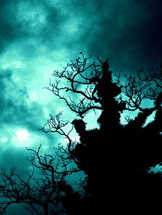 darkening silhouette in turquoise
