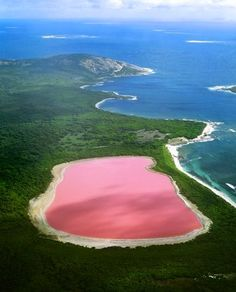 Lake Hillier, Western Australia, is on Middle Island, the largest of the islands and islets that make up the Recherche Archipelago. The source of the pink color has not been definitively proven. The pink color of other salt lakes (e.g. Pink Lake) in the region arises from a dye created by the organisms Dunaliella salina and Halobacteria. Another hypothesis is that the pink color is due to red halophilic bacteria in the salt crusts.
