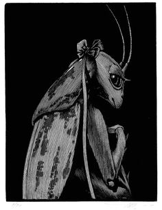 Barry Moser. I Was Named for Him. From The Blessing of Beasts. (wood engraving)