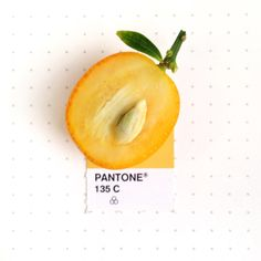 Pantone 135 color match. The inside of a Kumquat. I just think it's the most fun fruit name to say. Kum. Quat. :-)