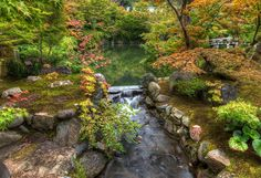 Kyoto was filled with thousands of these tiny gardens with ponds and little rivers. Which one to take photos of first?!?  - Kyoto, Japan  - Photo from #treyratcliff Trey Ratcliff at http://www.StuckInCustoms.com