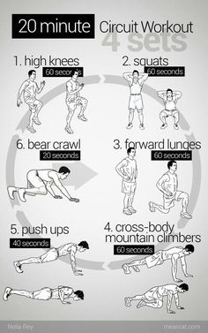20 min circuit workout