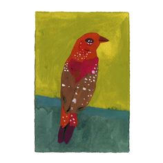 "Original painting of a Red Avadavat on 5"" by 7"" printmaking paper. Hand  painted with gouache and watercolor paint. $9 of the sale of this piece is  donated to the National Audubon Society.  signed on the back, shipped priority mail with tracking info"