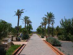 El Boticario (Almería) July 2007