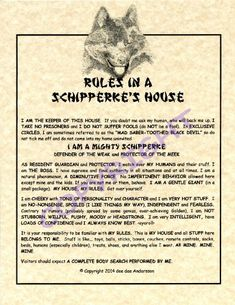 Amazon.com: Rules In A Schipperke's House: Prints: Posters & Prints