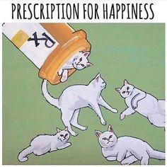 #Cats  #Cat  #Kittens  #Kitten  #Kitty  #Pets  #Pet  #Meow  #Moe  #CuteCats  #CuteCat #CuteKittens #CuteKitten #MeowMoe      MeowMoe - i need it ...   https://www.meowmoe.com/115753/