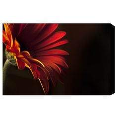 Wall Art Floral Print- Red and Black