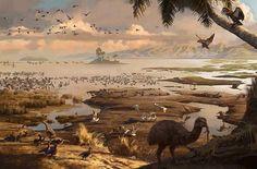 Miocene (New Zealand)