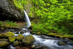 Ponytail Falls by Pete Piriya