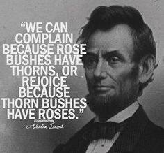 We can complain because rose bushes have thorns, or rejoice because thorn bushes…