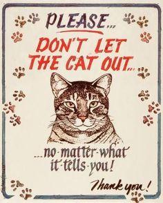 Hauser--Cat Out Plaque en métal - sur AllPosters.fr. Parcourez notre galerie de plus de 500.000 posters et affiches d'Art. Encadrements, satisfait ou remboursé. #catsdiydecoration