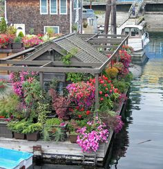 houseboat garden gibsons bc