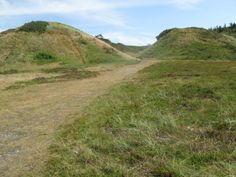 dunes on Veno, Denmark
