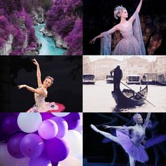 """Aesthetic ↳ The Lilac Fairy """"She shall live""""  #2"""