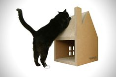 Krabhuis Cardboard House For Your Cat (5)
