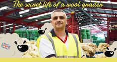 Unusual jobs. Blog - British Wool's Senior Head Grader talks about how much he loves his job and how the job has stood the test of time throughout the wool industry's history.