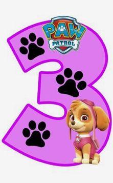 3 MESES Third Birthday Girl, Minnie Birthday, Dog Birthday, 3rd Birthday Parties, Sky Paw Patrol, Paw Patrol Party, Imprimibles Paw Patrol, Paw Patrol Birthday Theme, Paw Patrol Costume
