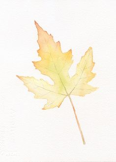 Maple Leaf Original Watercolor Painting Print 5x7 - Fall - Autumn Painting - Leaves - Yellow - Orange - Nature Print via Etsy