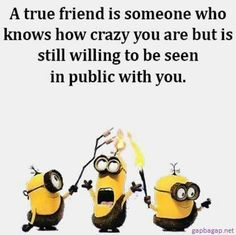 Crazy friend quotes - Funny Minion Quote About Crazy Friends… Funny Minion Pictures, Funny Minion Memes, Minions Quotes, Funny Texts, Minion Sayings, Minion Humor, Minions Minions, Fun Sayings, Crazy Friend Quotes