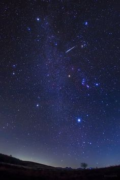 KAGAYA @KAGAYA_11949  11月6日 冬の大六角形の中を飛ぶ、おうし座流星群の流れ星。 冬の大六角形は、リゲル、シリウス、プロキオン、ポルックス、カペラ、アルデバランを結んだ大きな星つなぎの環です。 (今朝未明、長野県にて撮影)