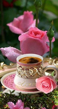 Good Morning Coffee Images, Good Morning Flowers Gif, Good Morning Gif, Good Morning Greetings, Morning Images, Good Morning Picture, Coffee Flower, Raindrops And Roses, Beautiful Rose Flowers