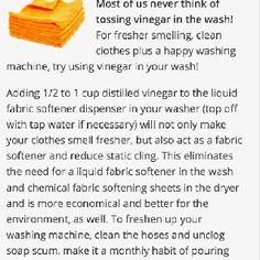 Vinegar Tip
