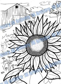 Coloring Page  Sunflower by JBArtistryShop on Etsy
