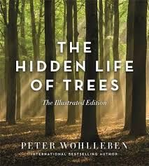 Hidden Life of Trees The Illustrated Edition by Peter Wohlleben, Jane Billinghurst Peta, Lessons Learned In Life, Life Lessons, Peter Wohlleben, Forest Ecosystem, Process Of Change, Science Curriculum, Children's Literature, Student Learning
