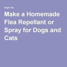 Make a Homemade Flea Repellant or Spray for Dogs and Cats