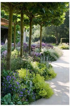 Back Gardens, Outdoor Gardens, Small Gardens, Garden Front Of House, House Front, The Secret Garden, Cottage Garden Design, Front Yard Landscaping, Landscaping Ideas