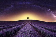 """Foto """"Alone"""" by Javier de la Torre #500px"""