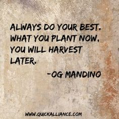 Always do your best. What you plant now. You will harvest later. - Og Mandino http://www.quickalliance.com/quotes/