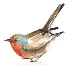 Robin, animal art, watercolor painting art print, aquarelle... (650 RUB) ❤ liked on Polyvore featuring home, home decor, wall art, birds, animals, art, fillers, draw, garden wall art and watercolor animal paintings