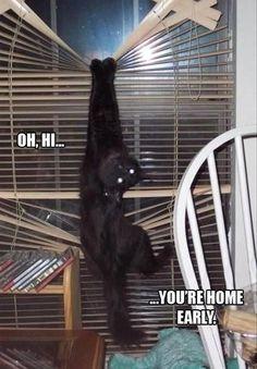 Oh, Hi... !
