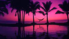 Palm Tree Sunset Wallpapers Widescreen - http://wallatar.com/wp-content/uploads/2015/02/palm_tree_sunset_wallpapers_widescreen.jpg - http://wallatar.com/palm-tree-sunset-wallpapers-widescreen/