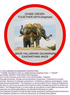 Elephant Wisdom - EC by Sudha Ambikadas Protection Sigils, Healing Codes, Switch Words, Wealth Affirmations, Money Spells, Abraham Hicks Quotes, Special Words, Magic Words, Yoga