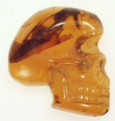 Skull carved from amber