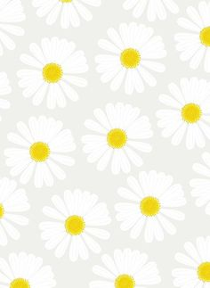 Daisy wallpaper ~ summery and girly x Cute Backgrounds, Phone Backgrounds, Cute Wallpapers, Wallpaper Backgrounds, Iphone Wallpapers, Cool Wallpaper, Pattern Wallpaper, Daisy Wallpaper, Spring Wallpaper