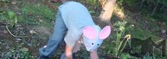 It is easy to make a Templeton the Rat Costume for under $10. Templeton was the rat in Charlotte's web.