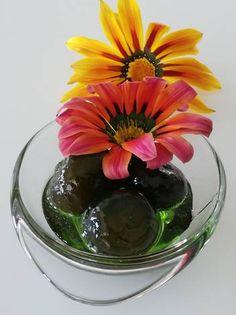 Σύκο γλυκό κουταλιού Plants, Plant, Planets