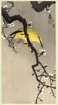 小原 古邨 (Ohara Koson)의 작품 - 3 中 2 Eagle under Snow Egret on Snowy Tree Egrets in Snow. Ohara Koson, Hokusai, Art Chinois, Art Asiatique, Art Brut, Japanese Painting, Japanese Prints, Japanese Plum, Japan Art