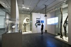 Arktis, installation shot, Louisiana Museum of Modern Art. Photo: Ty Stange.