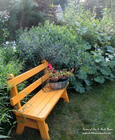 Yellow garden bench  -  Len and Barb Rosen garden