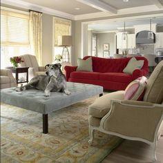 Choosing Pet Friendly Furniture for your Interiors - decoist.com